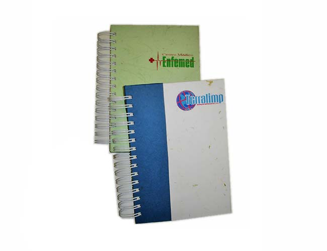 02 - AGENDAS 2010